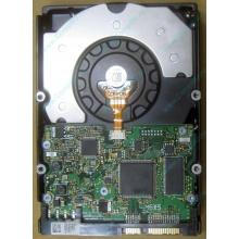 HDD Sun 500G 500Gb в Муроме, FRU 540-7889-01 в Муроме, BASE 390-0383-04 в Муроме, AssyID 0069FMT-1010 в Муроме, HUA7250SBSUN500G (Муром)