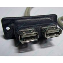 USB-разъемы HP 451784-001 (459184-001) для корпуса HP 5U tower (Муром)